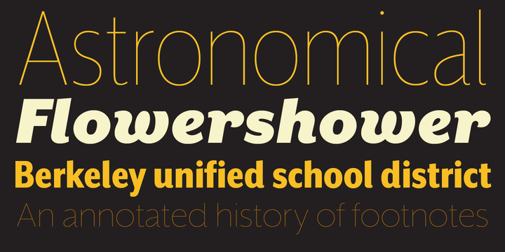 Mr Eaves XL Sans Font Family