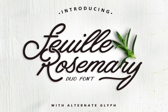 Feuille Rosemary - iFonts xyz