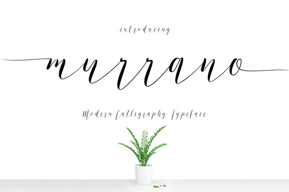 Happy Font Bundle