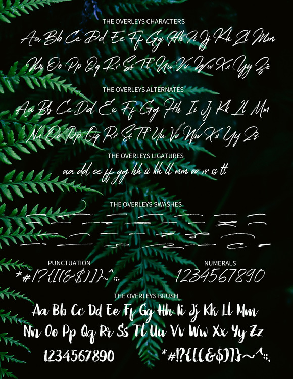 The Overleys Script Font