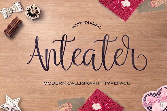 Anteater Script Font