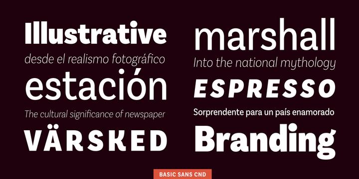 Basic Sans Cnd Font Family - iFonts xyz