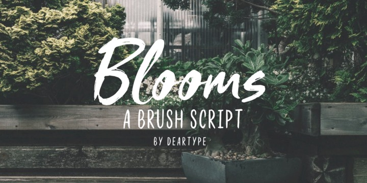Blooms Font Family - iFonts xyz