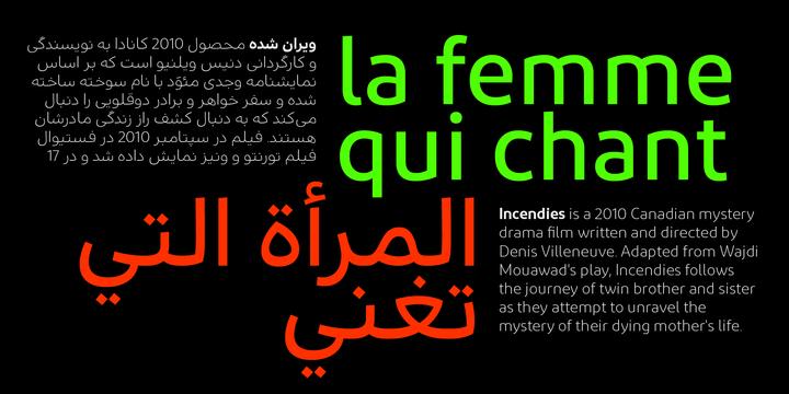 Diodrum Arabic Font Family - iFonts xyz
