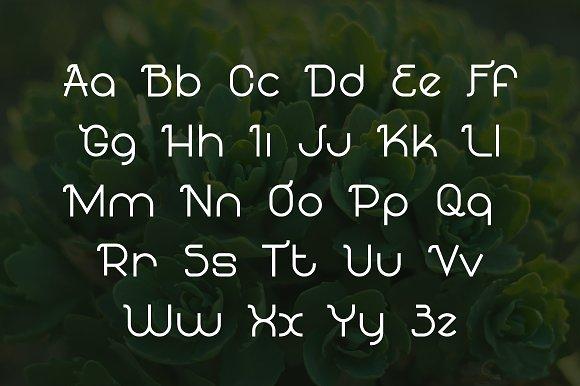 Flawourite serif typeface