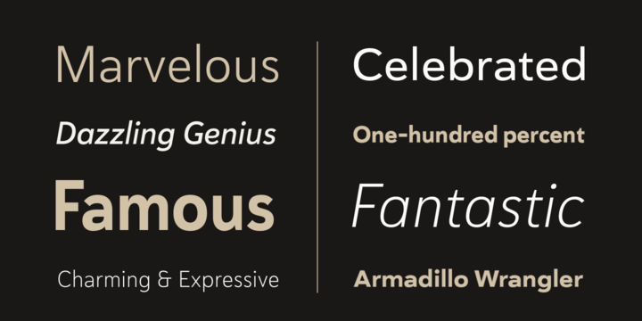 Haboro Sans Font Family