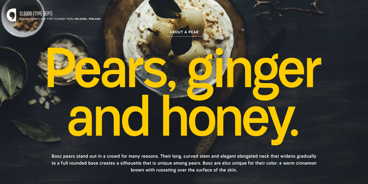 Harpers Grotesque Font Family