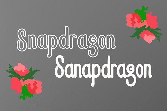 Snapdragon Sans Serif