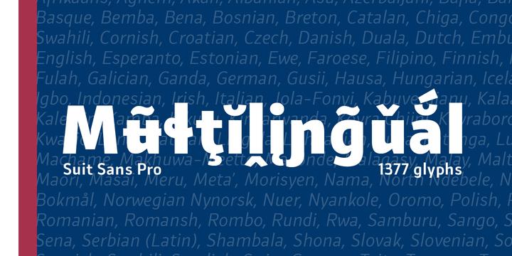 Suit Sans Pro Font Family