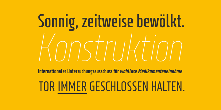 XXII Neue Norm Font Family