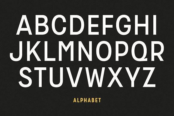 Zippy Gothic Font Family