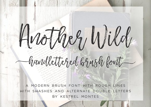 Another Wild Calligraphy font
