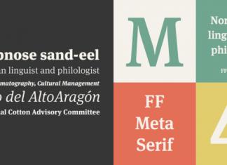 FF Meta Serif Full Family