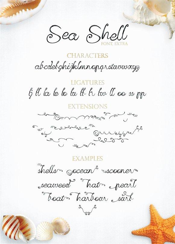 Sea Shell Script Font