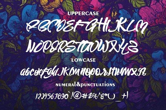 Wild style font script