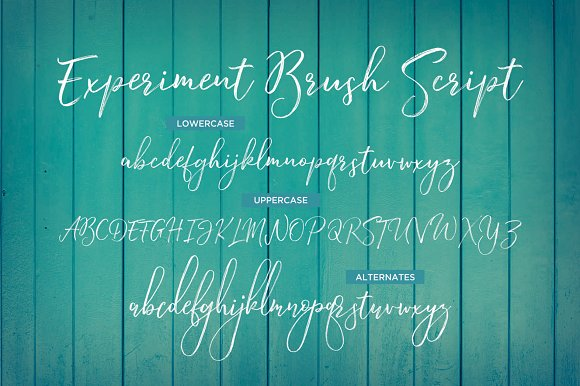 Experiment Brush Script
