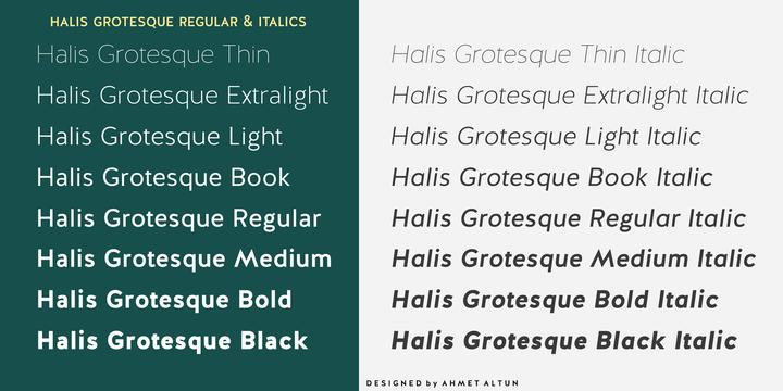 Halis Grotesque Font Family