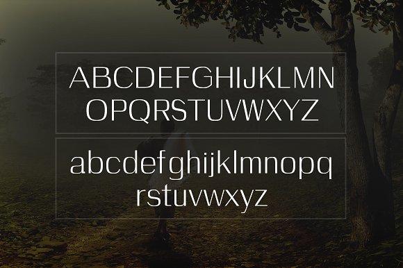 Celosia Typeface