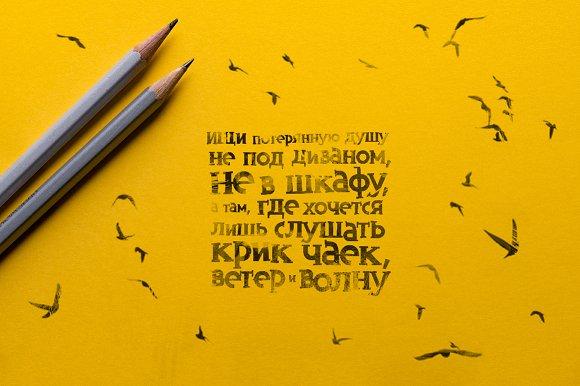 Inversus – a slab serif display font
