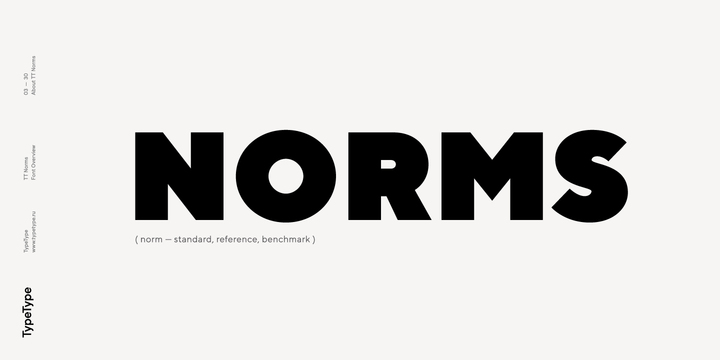 TT Norms Font Family