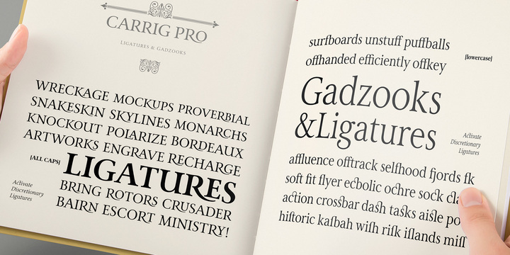 Carrig Pro Font Family