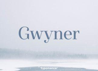 Gwyner - iFonts - Download Fonts