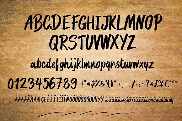 Mr. Proxy | Handwritten Font