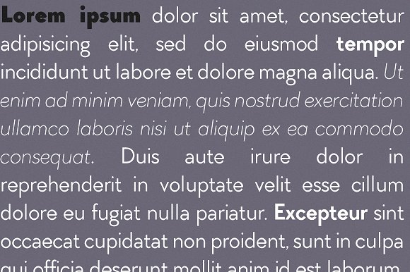 Arnold Font Family