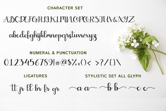 Crayonila Script
