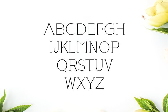 Lisandro Slab Serif Font