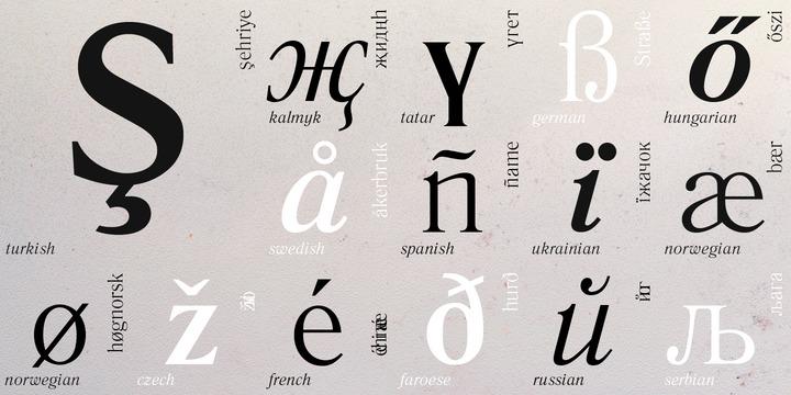 Literaturnaya Font Family