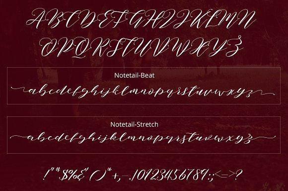 Notetail Script Typeface