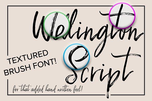 Wellington Script Font