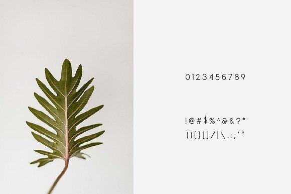 Espresso - Minimal Display Font