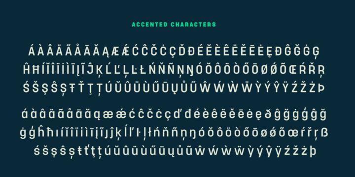 Project Sans Font Family (RETAIL)