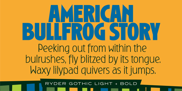 Ryder Gothic Pro Font Family
