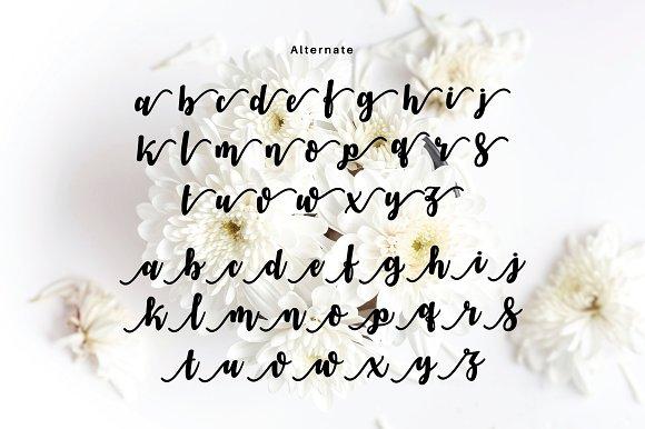 VIANDA Font