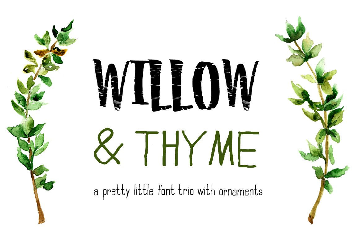 willow font