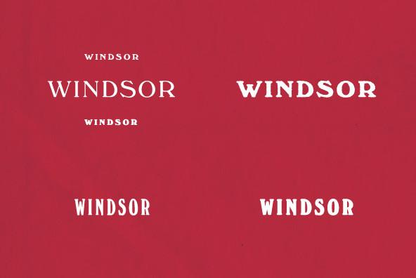 Windsor Font Family