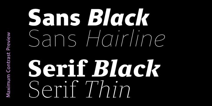 Clara Serif Font Family