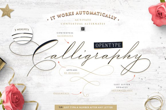 Wedding Scripts Fonts.The Wedding Script Font Invitation Ifonts Xyz