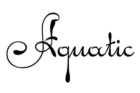 Pendulum Font Family