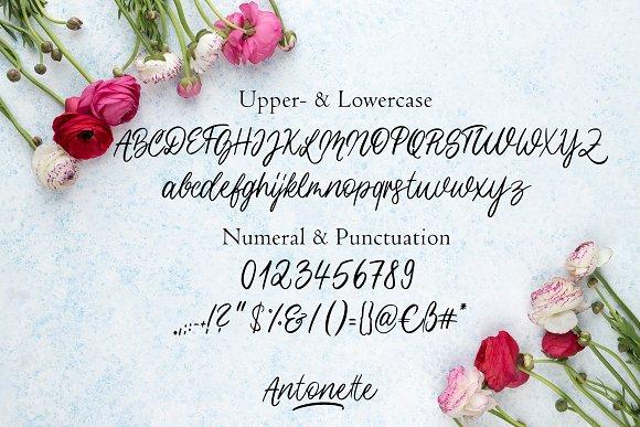 Antonette - Handwritten Font