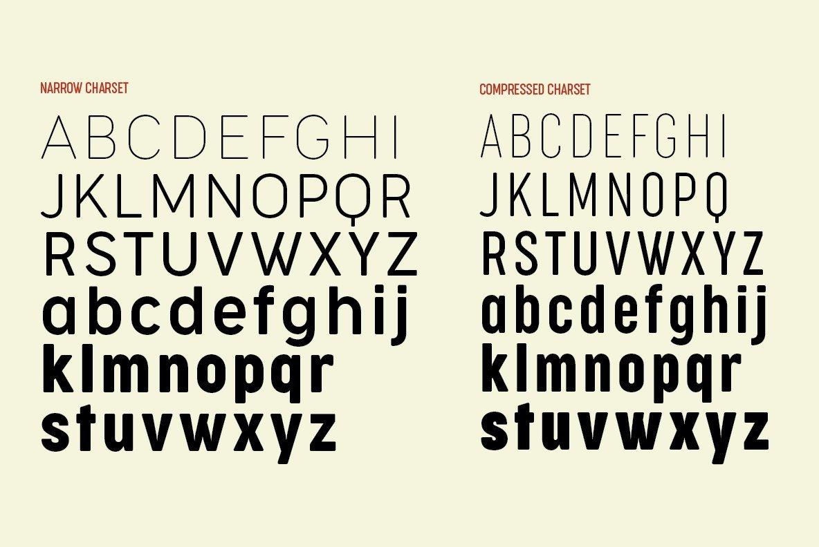 Cocogoose Narrows Font Family - iFonts xyz