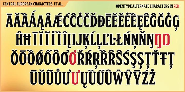 FTY Skorzhen Font