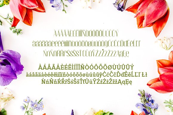 Jadrien Serif + Sans Duo 5 Font Pack