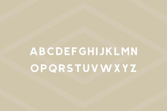 Salmon - Modern Sans Serif
