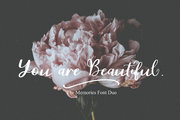 The Memorie Font DUO & Doodle