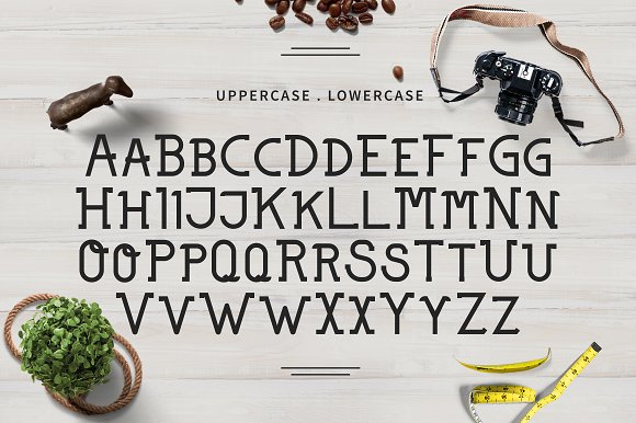 Northern Slab Serif Font