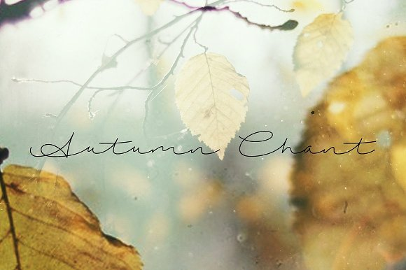 The Natural Handwriting Bundle